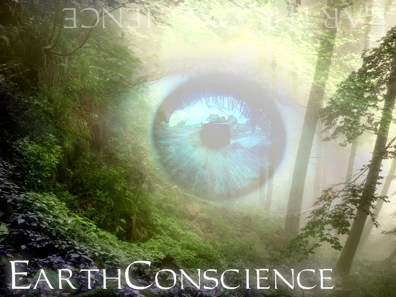 Earth Conscience a