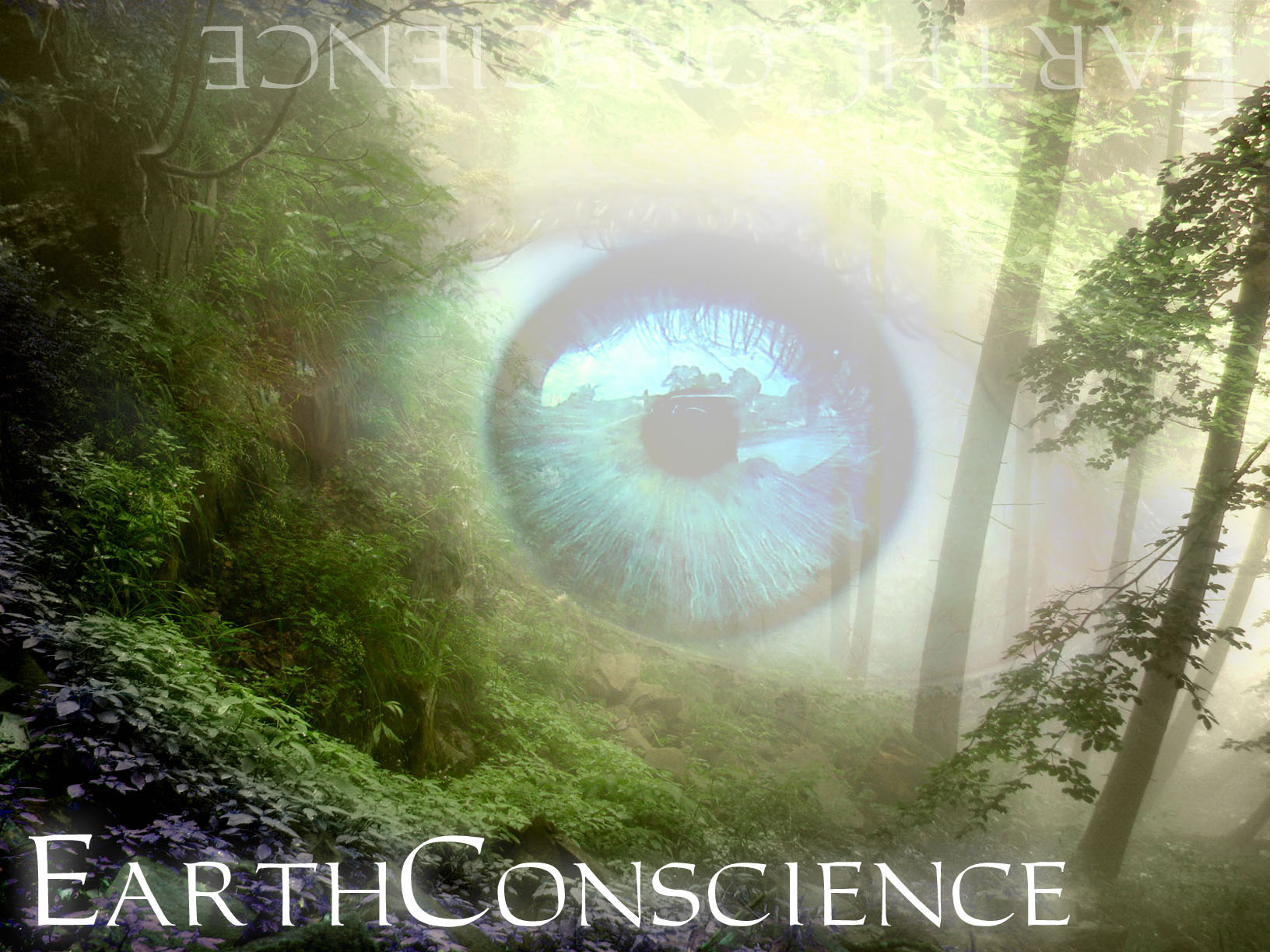 Earth Conscience