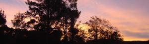 cropped-peninsula-003.jpg